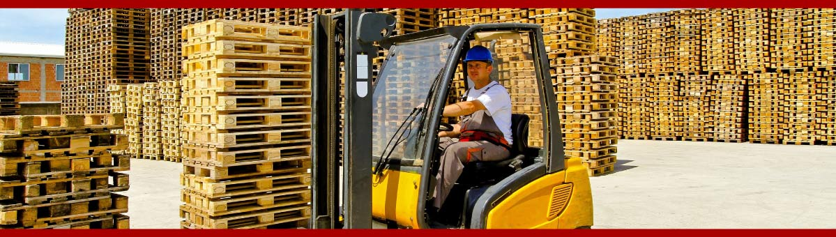 Driver operating forklift in pallette storage area